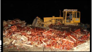 Rusii au distrus 38 de tone de capsuni provenite din Ucraina