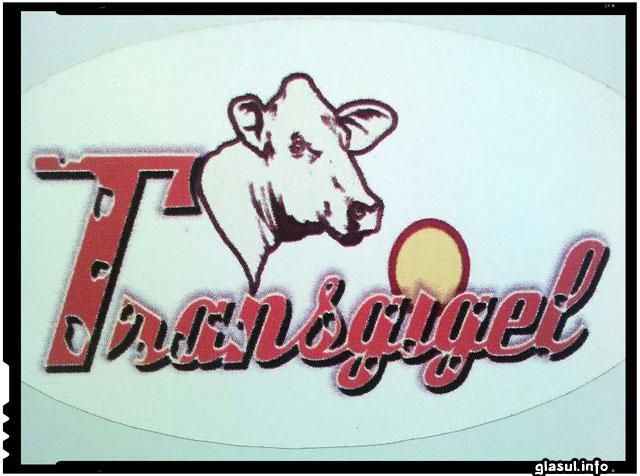 Trans Gigel Iasi, Sipote, producator autohton 100% produse locale romanesti din ferma proprie