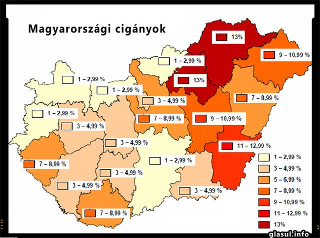 Tiganii din Ungaria