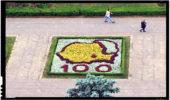 De ani buni, Ploieștiul este unul dintre cele mai importante centre ale unionismului din România: o hartă a României reunită cu Moldova a fost realizată din flori