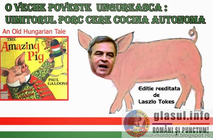 "O veche poveste ungureasca - ""Uimitorul porc"" cere cocina autonoma"