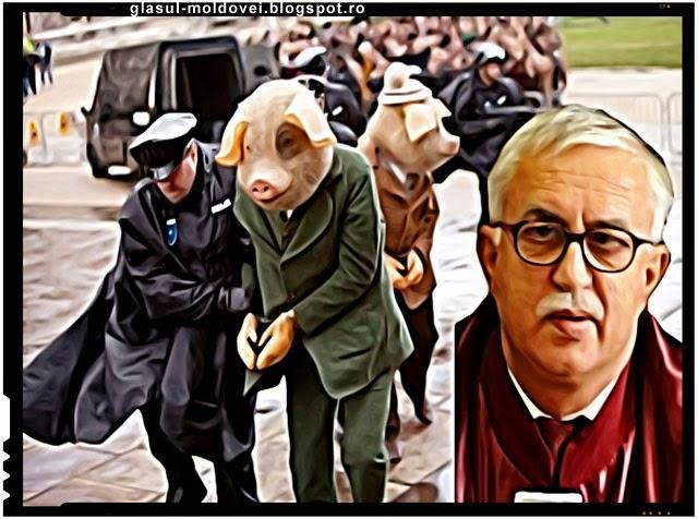 Zegrean - Nu exista in Constitutie ceva despre animale!
