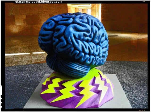 Propunere legislativa care va protejeaza creierul