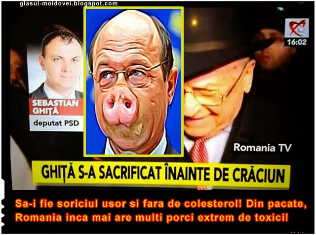 Ghita s-a sacrificat inainte de Craciun! Din pacate, Romania inca mai are destui porci toxici!