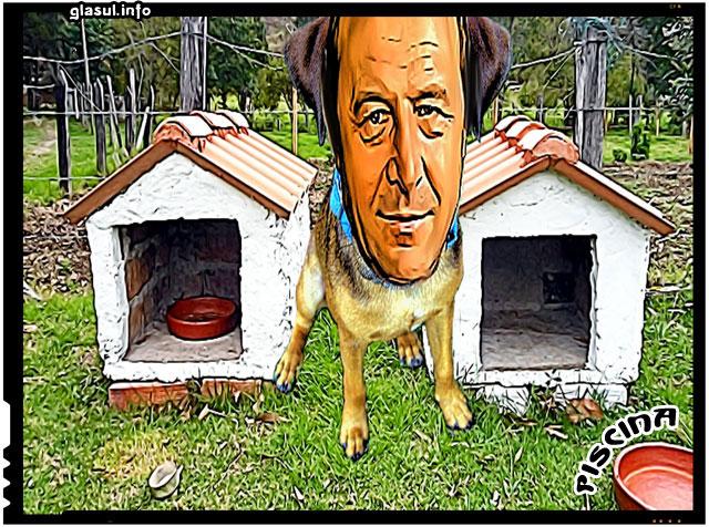 Lui Traian Basescu i s-a repartizat o noua vila cu piscina