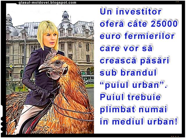 """Elena Udrea - Cresterea puilor sau cocosilor sub brandul """"Cocos Spagar"""""""