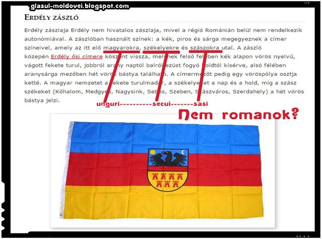 Romanii nu sunt reprezentati pe steagul Transilvaniei