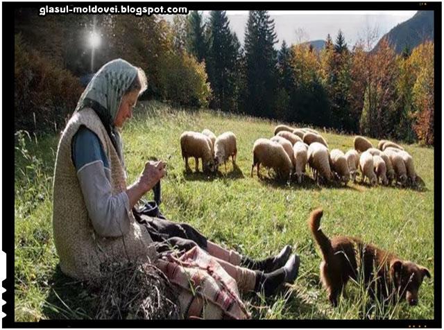 Roumanie je t aime par youan, sursa imagine: youtube.com
