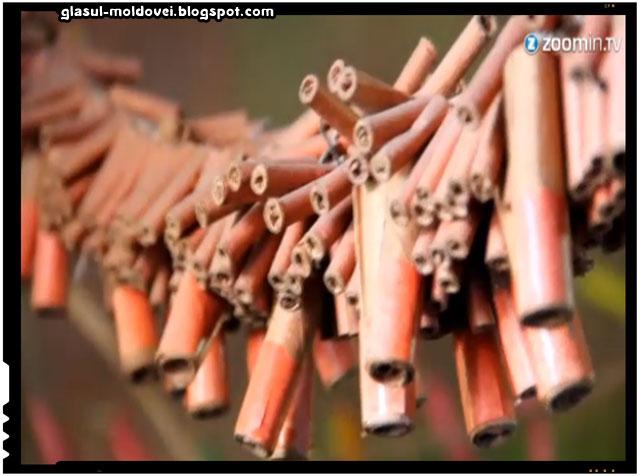 Sute de olandezi au trecut granita in Belgia pentru a cumpara artificii pentru Anul Nou, sursa foto: youtube.com