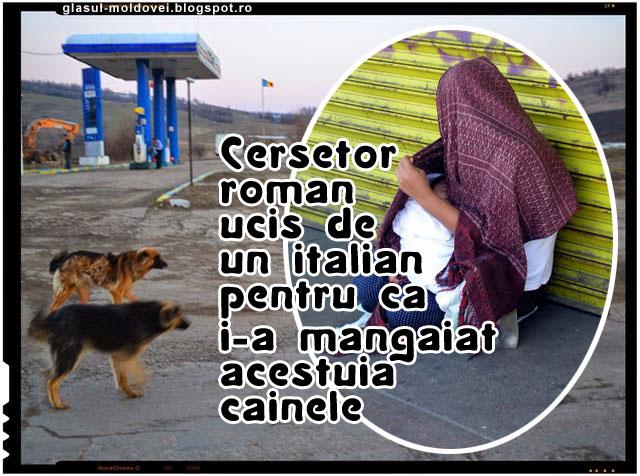 Cersetor roman ucis in bataie de catre un italian pentru ca i-a mangaiat acestuia cainele