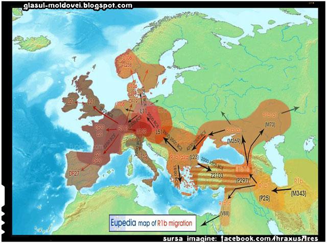 Contingentul R1b-R1a a urcat pe Dunăre, prin Câmpia Panonică în jurul anilor 2800 î.Hr., a pus capăt Culturii locale Bell (circa 2200 î.Hr.) și Culturii ceramicii cu fir (c. 2400 î.Hr.), culturi din Europa Centrală, și a înființat Cultura Unetice (2300-1600 î.Hr.), din Boemia și Germania de Est.