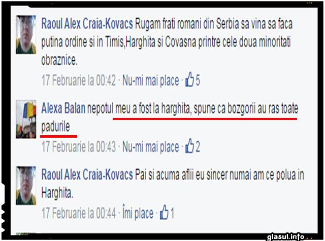 """Aflând de pățania românului din Serbia, un alt român din secuime l-a rugat mai în glumă, mai în serios să vină să facă """"puțină ordine"""" și în Timiș, Harghita și Covasna."""