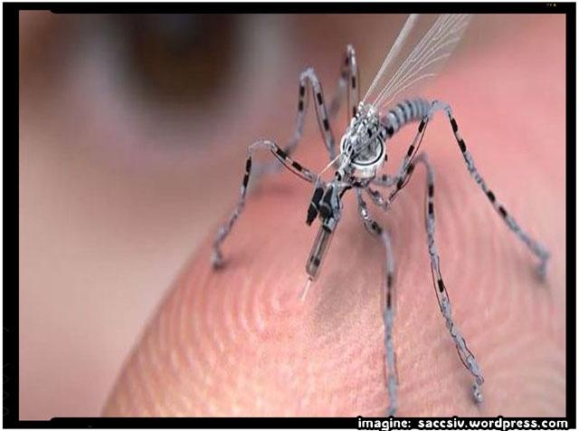 """Guvernul foloseste """"tantari-drone"""" pentru a va extrage ADN-ul, imagine: saccsiv.wordpress.com"""