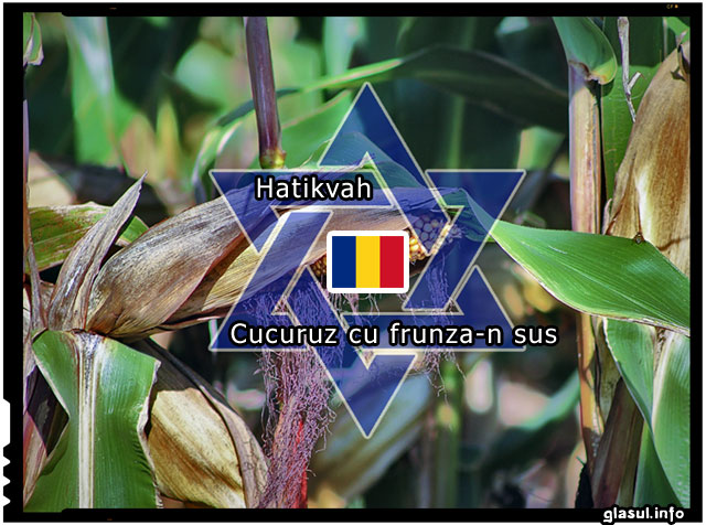 """CUCURUZ CU FRUNZA-N SUS"" ȘI POVESTEA IMNULUI DE STAT AL ISRAELULUI – ""HATIKVA"". THE Origin of the national anthem of Israel-HATIKVA."