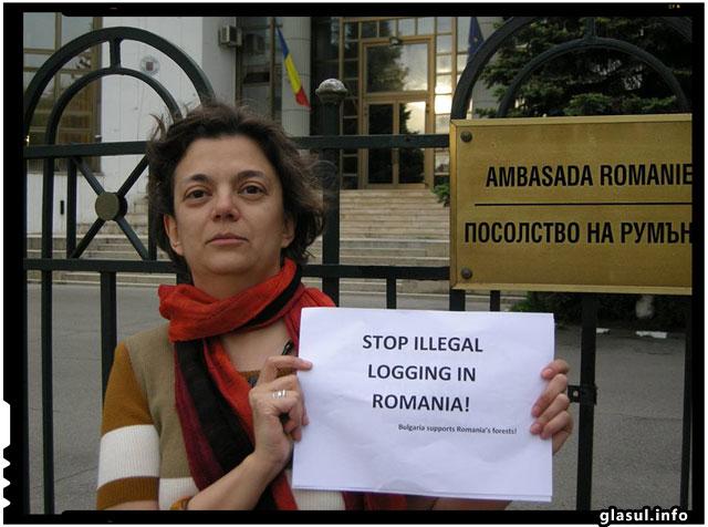 Bulgarii sunt alaturi de romani pentru stoparea defrisarilor ilegale din Romania
