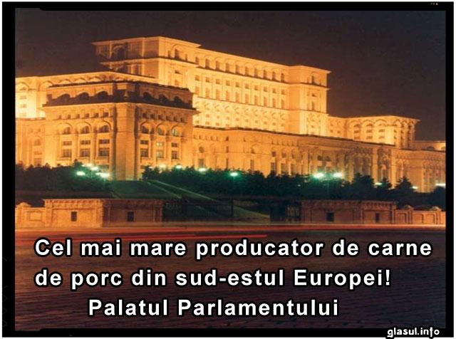 Industria carnii de porc din Romania inca mai are sperante! Palatul Parlamentului este cel mai mare producator de carne de porc!