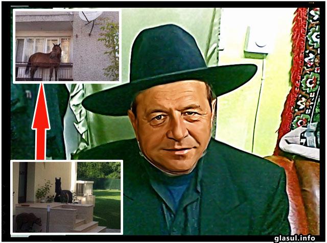 Traian Basescu nu renunta si cere in continuare birou! Nu are unde sa-si tina calul!