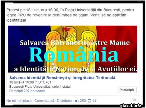 Protest pe 18 iulie, ora 16.00, în Piața Universității din București, pentru legea PRU de revenire la denumirea de țigani.