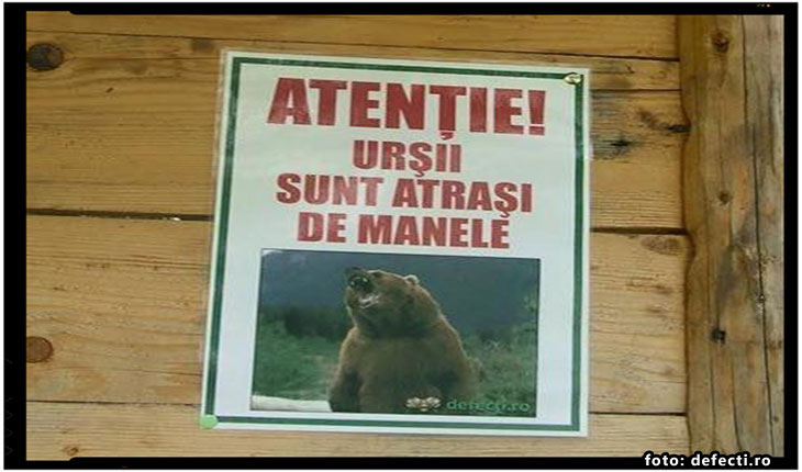 Manelistii ameninta ca pleaca din tara din cauza ANAF, foto: defecti.ro