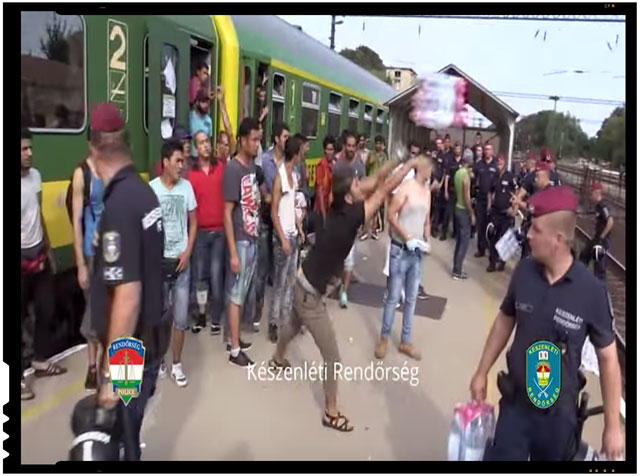Scene uluitoare! Imigrantii arunca pe jos apa si mancarea oferite, iar apoi se plang ca nu le sunt respectate drepturile omului