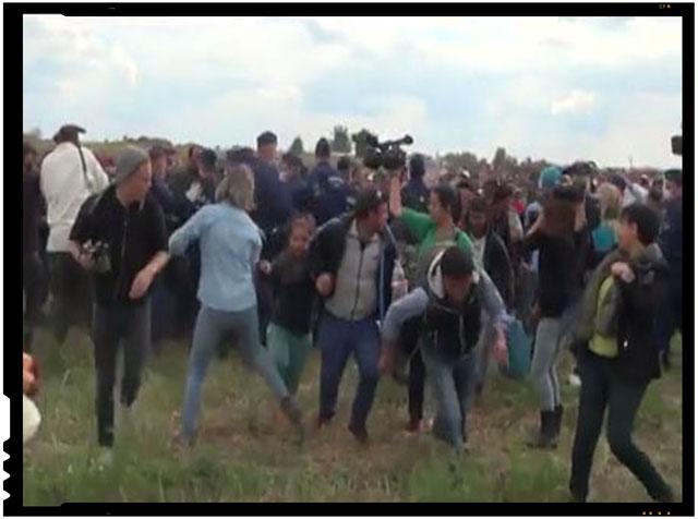 Gest reprobabil al unei femei cameraman din Ungaria. Loveste cu piciorul refugiatii care fug de politia maghiara