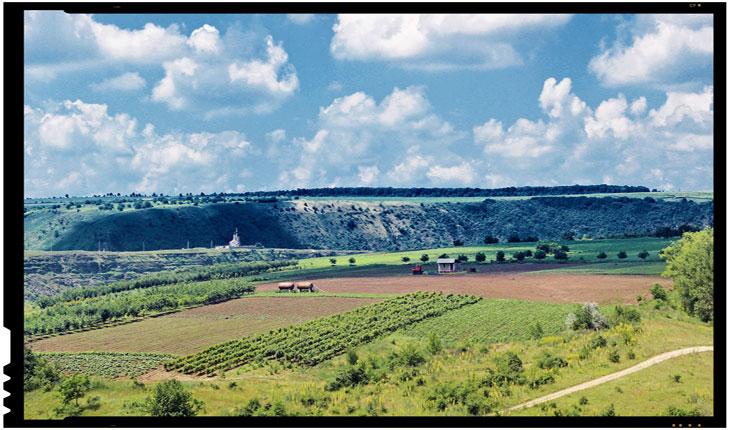 Romanii doresc sa faca investitii in Republica Moldova. Agricultura, domeniu prioritar