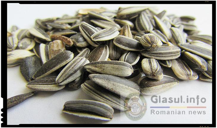 Amenzi usturatoare pentru cei care arunca pe jos coji de seminte sau alte gunoaie