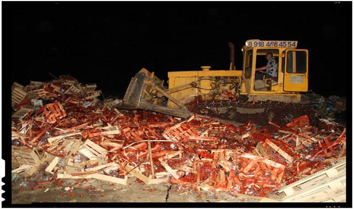 Rusii au distrus 38 de tone de capsuni provenite din Ucraina, Foto: www.facebook.com/kuban24/