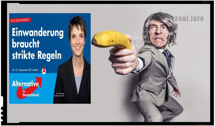 Partidul Alternativa pentru Germania sprijina inarmarea cetatenilor pentru autoaparare