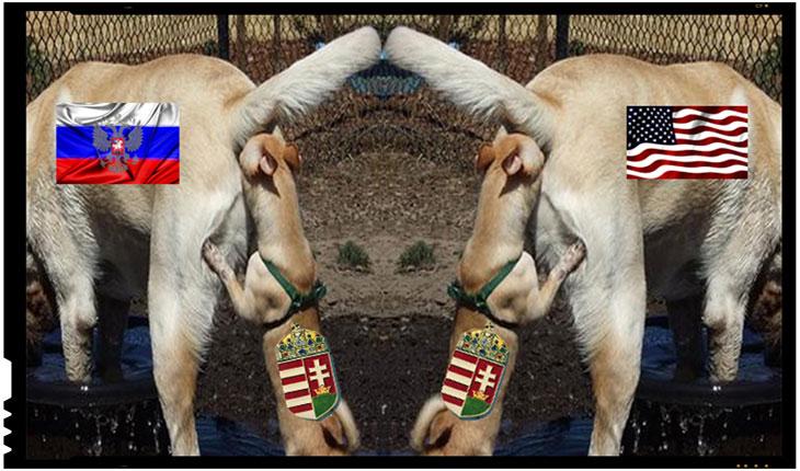 Ungurii extremisti din Romania sunt derutati! Nu mai stiu in fundul carei puteri mondiale sa-si bage nasul pentru a castiga teritorii romanesti
