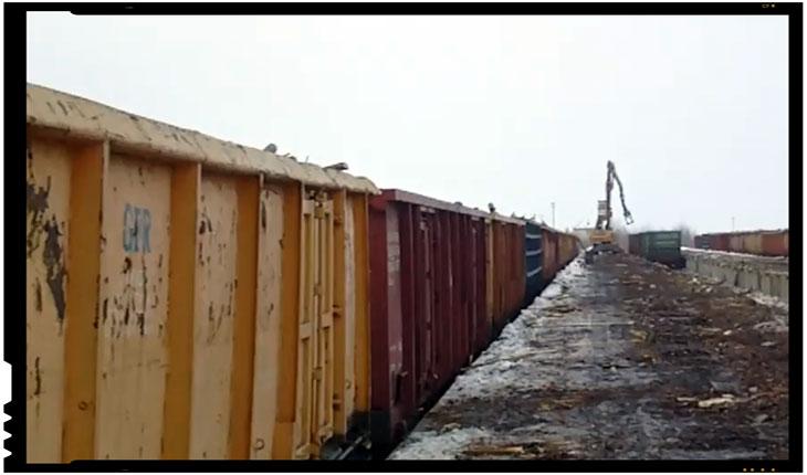 """Statul roman permite Schweighofer-ului importul lemnului """"radioactiv"""" din Ucraina?, Foto: captura video Facebook"""
