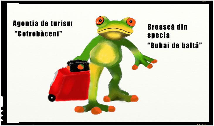 """Agentia de turism """"Cotrobăceni"""": S-au cumparat peste 2500 de bilete de avion pentru Iohannis si consilierii sai"""