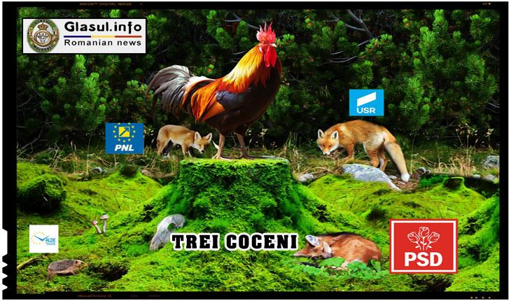 """Ne-am """"ales"""" cocos care cloceste 4 zile la Trei Coceni si trei zile la Sibiu!"""