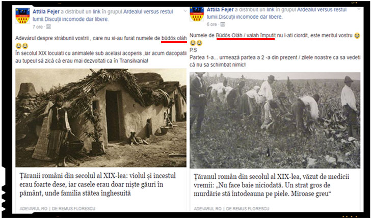 Cum isi mai bat joc cei de la (Ne)adevarul.ro de neamul romanesc, Foto: facebook.com