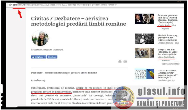 Sa facem lumina asupra antiromanismului Cristinei Tunegaru, profesoara de limba romana cu alergie la autori romani, Foto: corbiialbi.ro