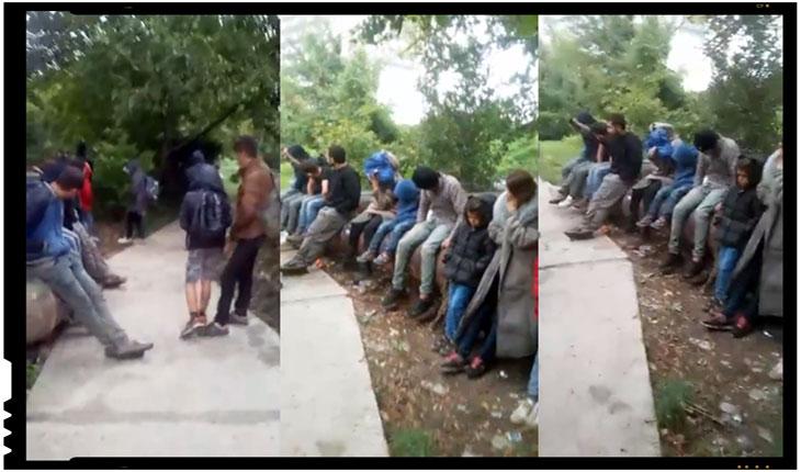 Un grup de imigranti ilegali s-a instalat intr-un parc din Timisoara, Foto: facebook.com/stefan.cojocnean