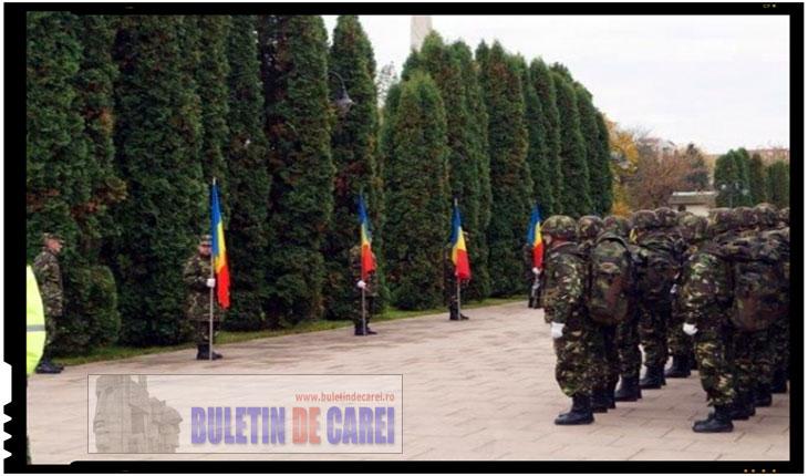 De ce ne sunt indepartate, batjocorite si ascunse monumentele eroilor in propria noastra tara? Cat va mai ramane Monumentul Ostaşului Român din Carei înconjurat de o perdeaua forestieră de 9 m?, Foto: BuletindeCarei.ro