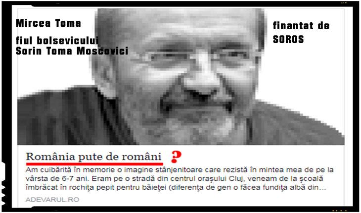 """Credeti ca exodul românilor este unul intamplator? Cui """"pute"""" o Românie plina de români?, Foto: captura Adevarul.ro"""