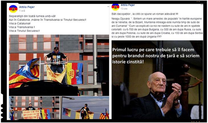 De ce nu m-am bucurat, dar nici n-am plans, la moartea lui Neagu Djuvara, Foto: captura Facebook