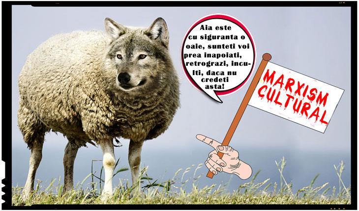 A TREBUIT SA MOARA DOI PROFESORI... Niste lupi in blana de oaie umbla printre profesori