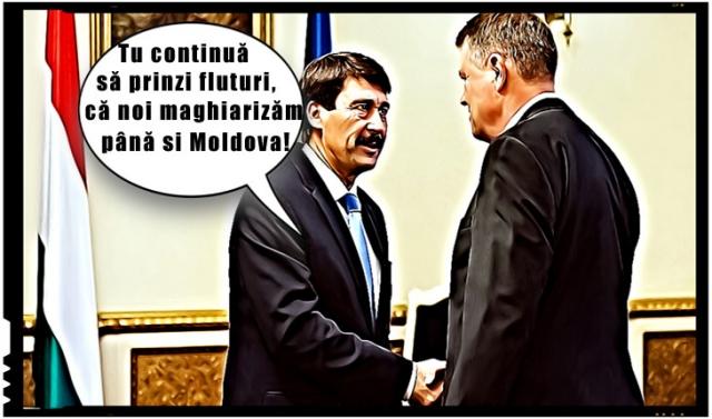 Întrevedere între Președintele Ungariei, Áder János și Klaus Iohannis, Foto original: presidency.ro (T)