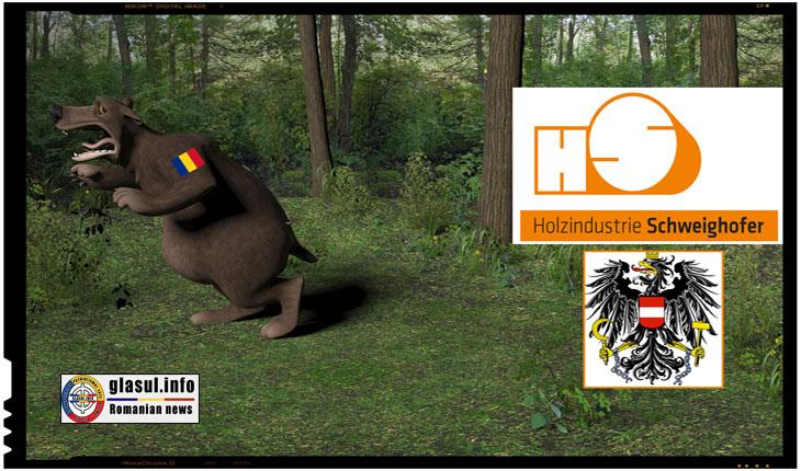 DIICOT-ul anunță percheziţii la Schweighofer, însă mulți dintre internauți și-au pierdut încrederea în competența instituțiilor statului