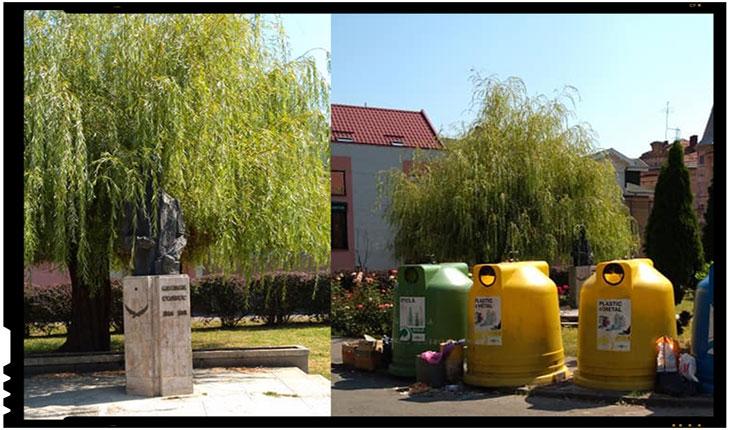 Batjocura continuă la adresa statuilor românești la Satu Mare: statuia lui George Coșbuc ascunsă sub o salcie și camuflată după ghene de gunoi, Foto: facebook.com/gheorghe.ioan.9404