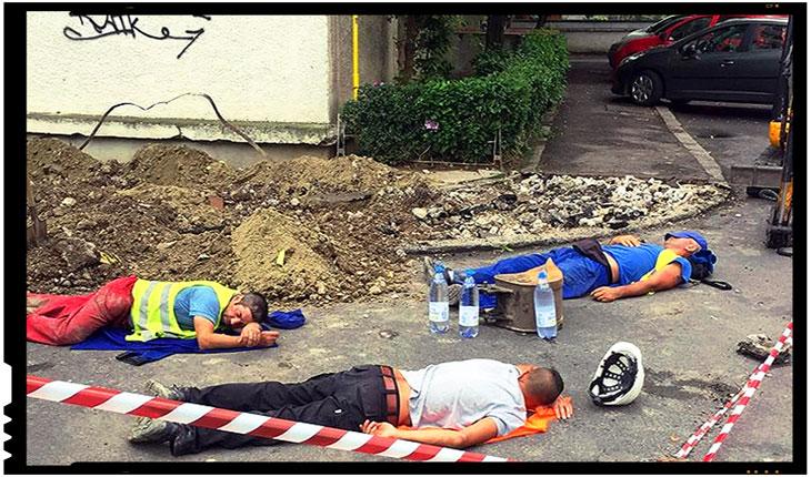 Azi în Timișoara, mâine în toata țara! Luați exemplu de la trei frați de-ai lui Dorel din Banat, Foto: facebook.com/TimisoaraCEC