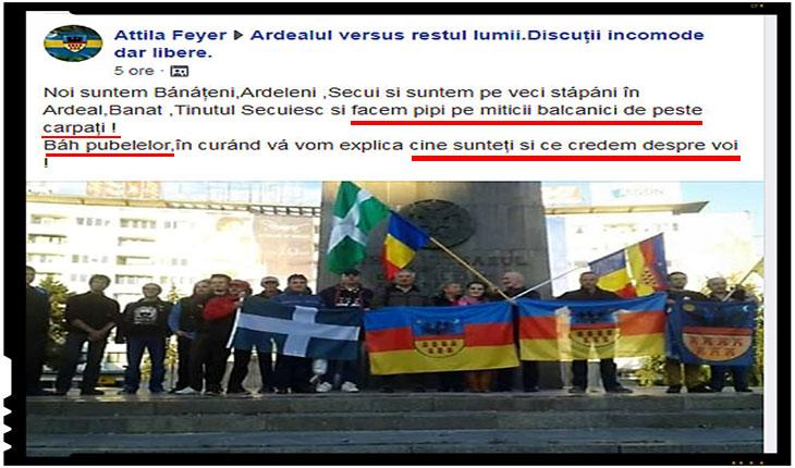 Pentru ce există CNCD? Doar ca să pornească adevărate vânători de vrăjitoare împotriva românilor?, Foto: facebook