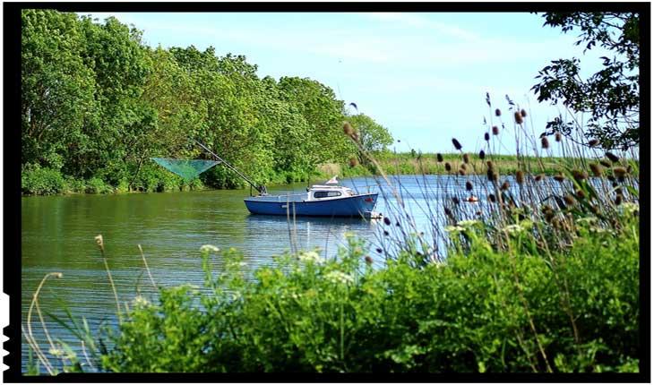 Restaurarea habitatului râurilor poate îmbunătăți pescuitul în apele interioare