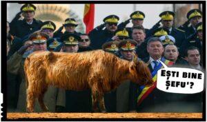 În vreme ce generalii francezi îl acuză de trădare pe Macron pentru semnarea Pactului ONU pentru migrație, ai noștri săcelează Plăvanul?, Foto original: cotidianul.ro