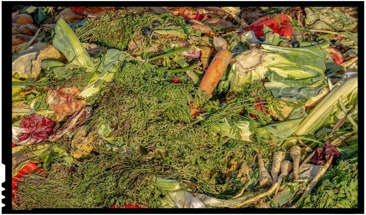 FAO sprijină statele din Europa de Sud-Est în reducerea risipei de alimente