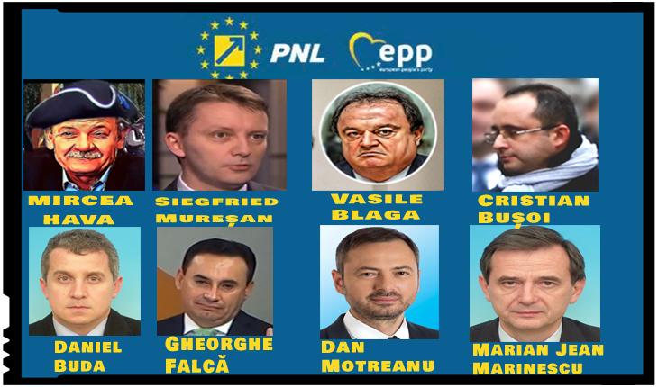 Lista horror de candidați ai PNL la europarlamentare