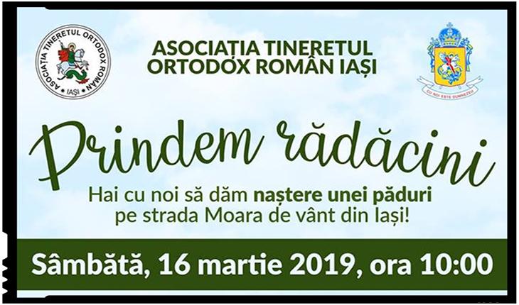 Campanie de împădurire la Iași inițiată de o asociație de tineret, Foto: facebook.com/iasi.ator